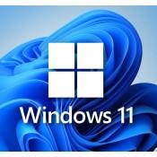 Windows 11 PRO Edition