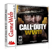 Call of Duty WW II - STEAM CDkey
