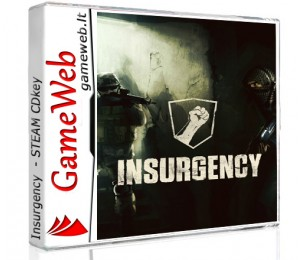 Insurgency - STEAM CDkey